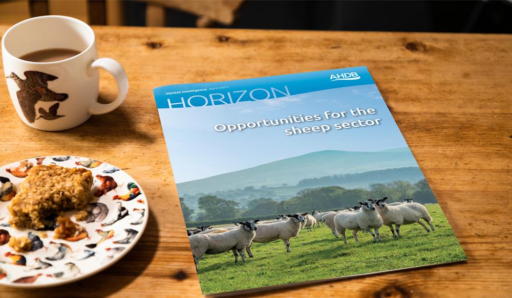 Horizon report - sheep