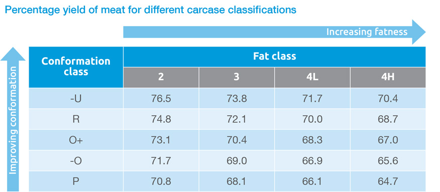 Percentage yield of meat for different carcase classifications table