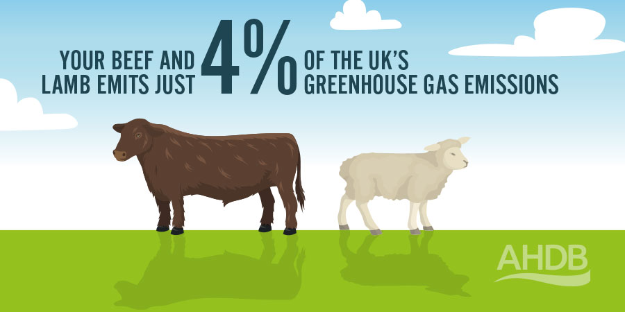Your beef and lamb emits just 4% of the UK's greenhouse gases. Source: https://www.theccc.org.uk/publication/reducing-uk-emissions-2019-progress-report-to-parliament/