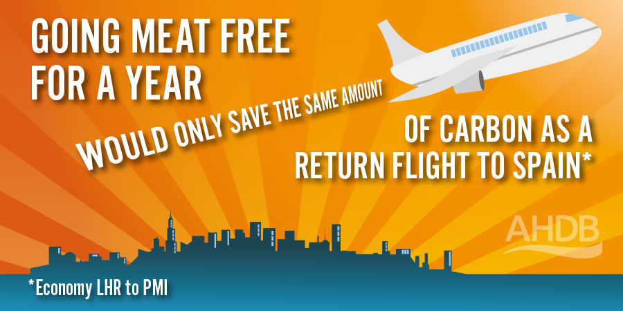 Your meat-free year will only save the same amount of carbon as a return flight to Spain (economy, LHR-PMI).