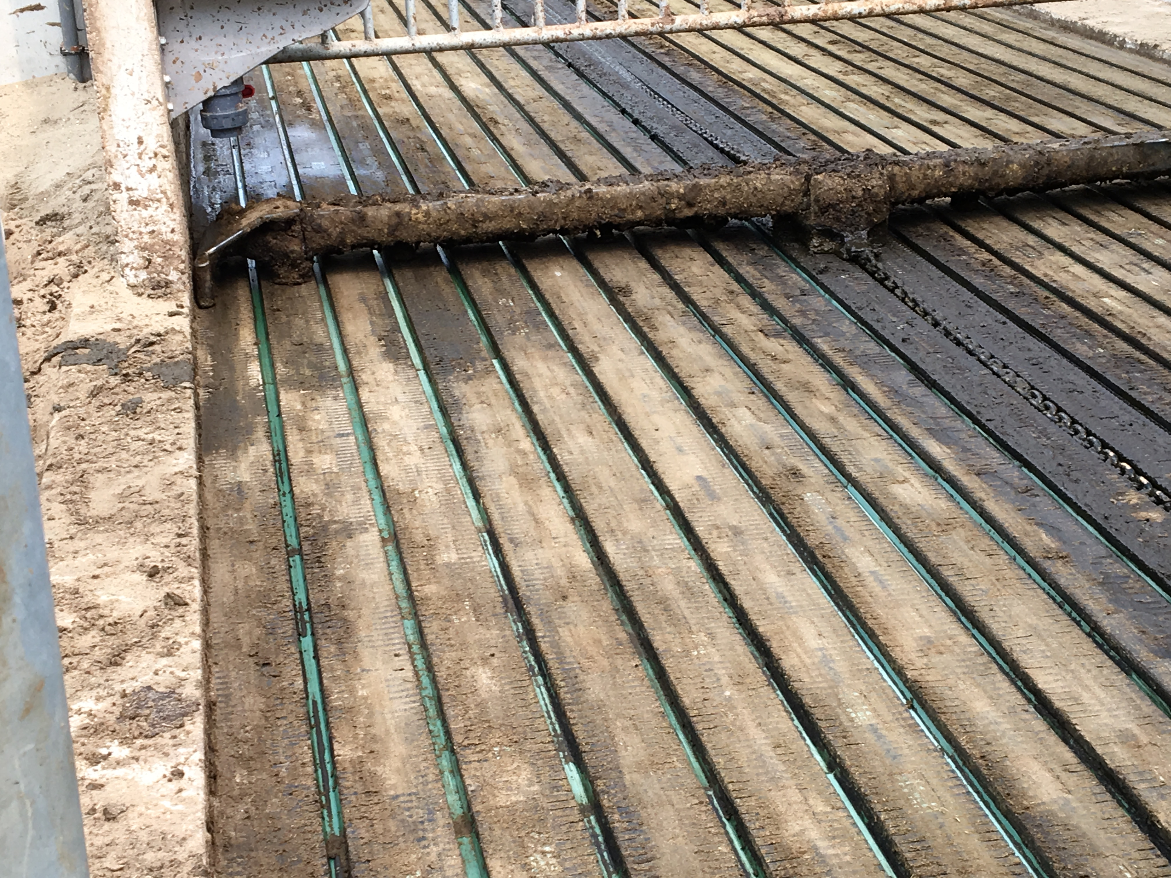 Grooved flooring system