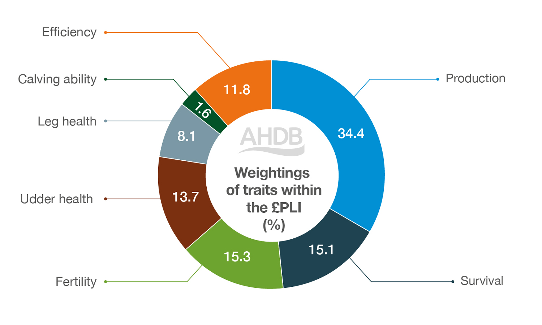 Weightings of Profitable-Lifetime-Index
