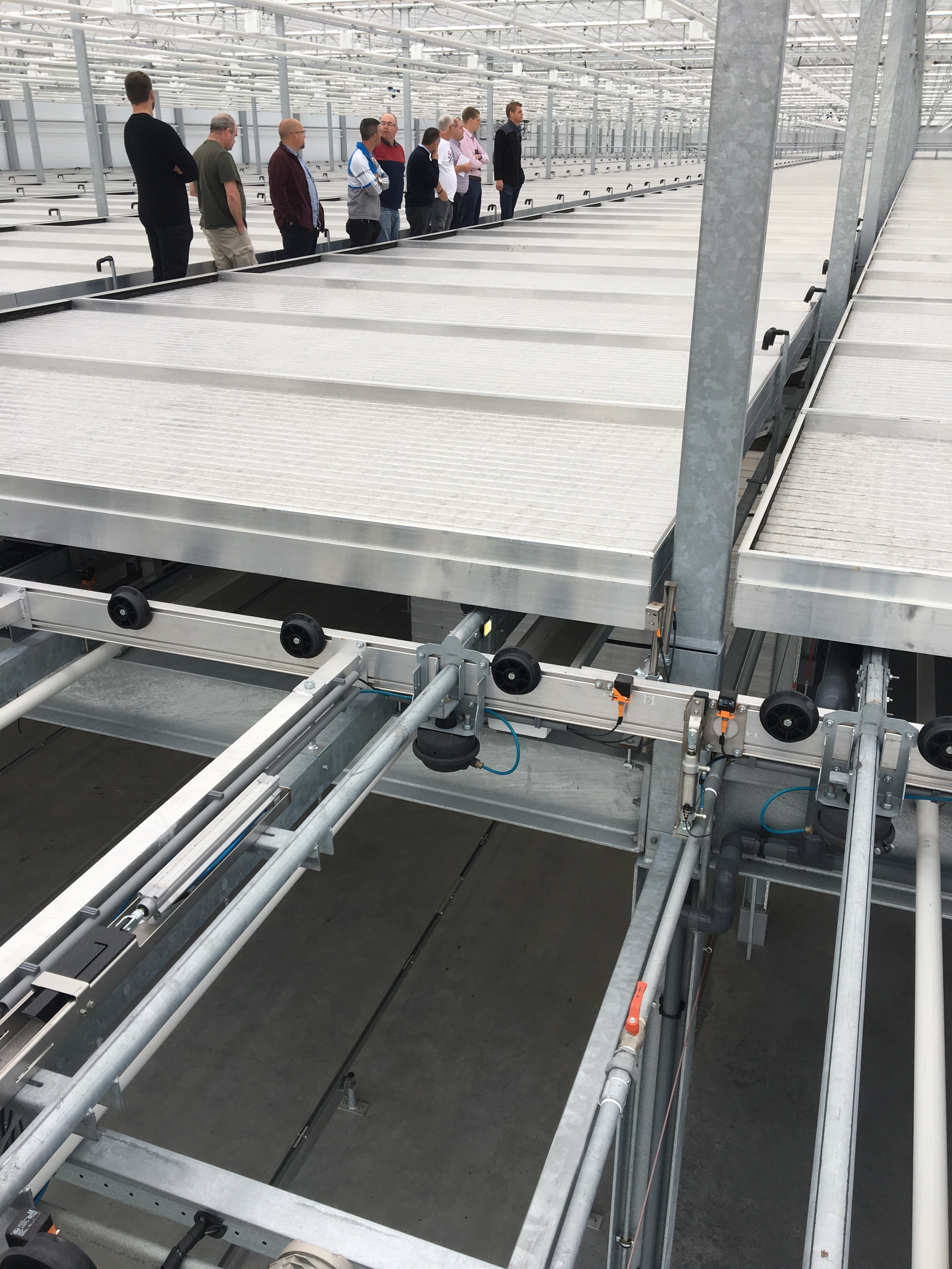 An automated bench system at Perry van der Haak Nursery
