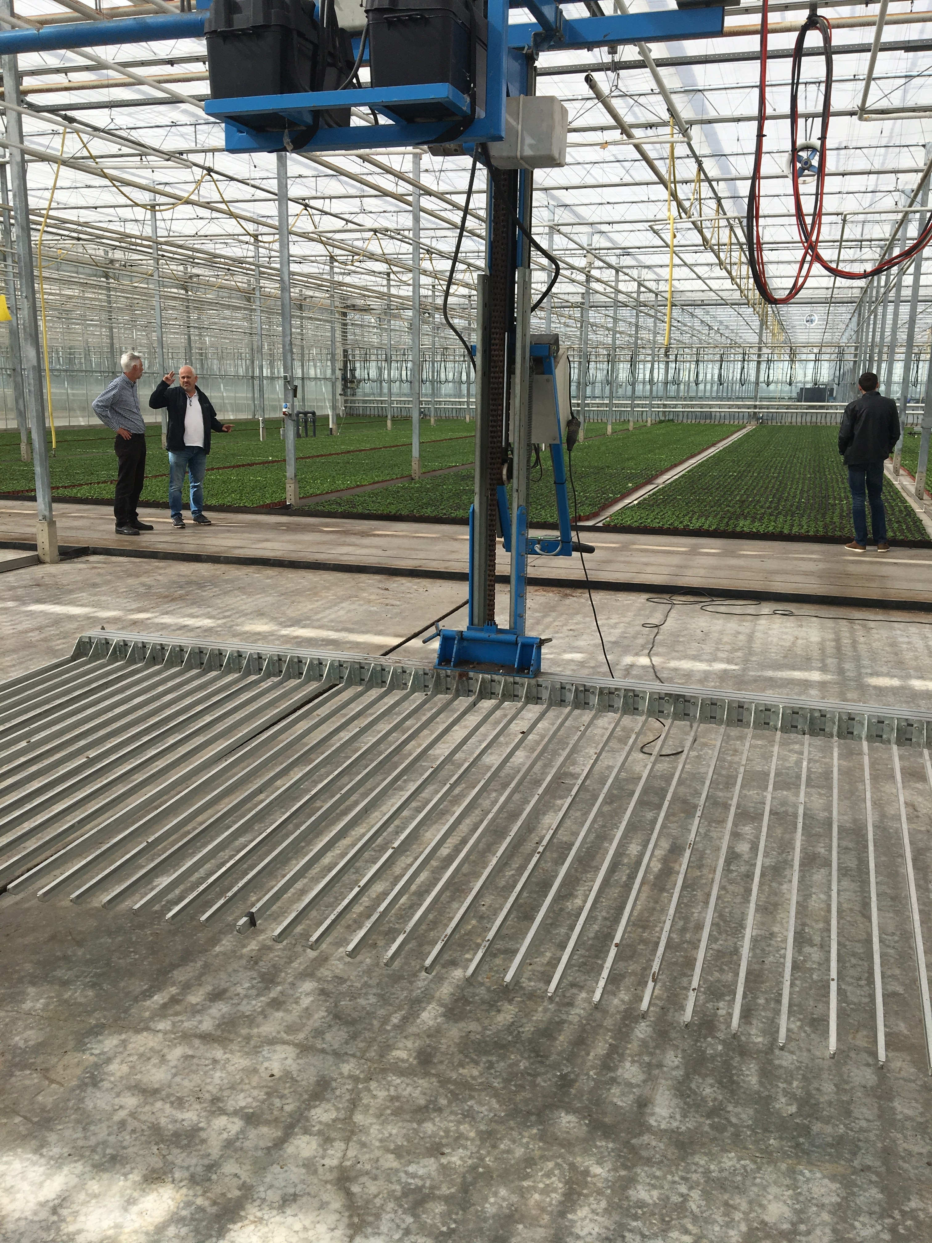 The powered fork system used at Zuidbaak Nursery for moving plants to and from production beds
