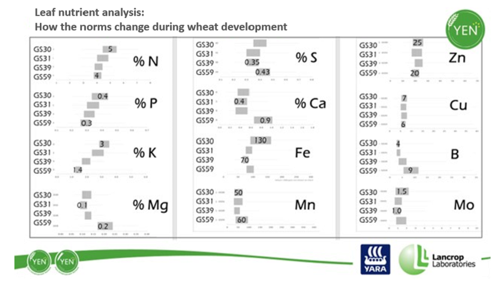 Leaf nutrient analysis results during wheat development