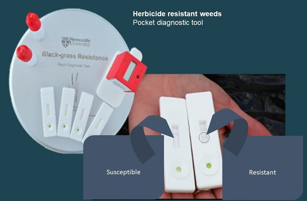 Pocket diagnostic tools can be used to detect herbicide resistance in field populations of weeds in as little as 10 minutes.