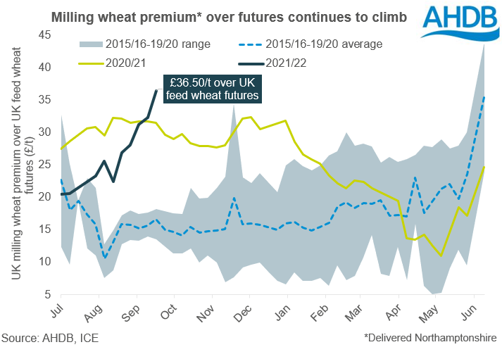 Milling%20wheat%20prems%2028%2009%202021.PNG