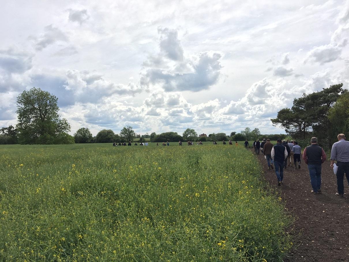 ASSIST field walk with Rob Fox