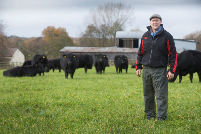 Dairy Farm Group: Redesign of Business ... - Case study