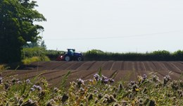 AHDB launches Carbon Week to support farmers