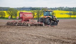 Ambitious arable farmer wanted to host AHDB Strategic Cereal Farm
