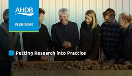 Potatoes%20Research%20into%20Practice
