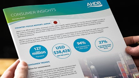 Consumer Insights Country Focus Report: Japan