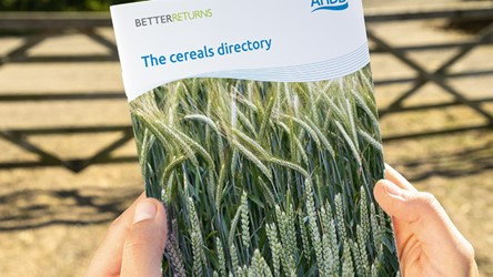 The Cereals Directory