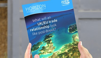 What will an UK/EU trade relationship look like post-Brexit?