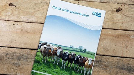 The UK Cattle Yearbook 2019
