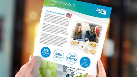 Consumer Insights Country Focus Report: USA