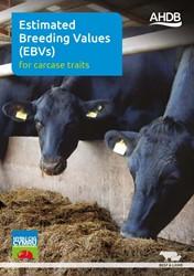 Estimated Breeding Values (EBVs) for carcase traits