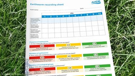 Earthworm recording sheet