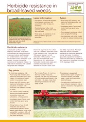 Herbicide resistance in broad-leaved weeds