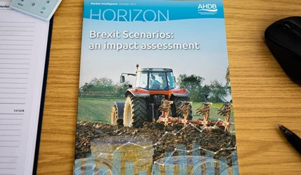 Horizon - Brexit Scenarios: an impact assessment - 11 October 2017