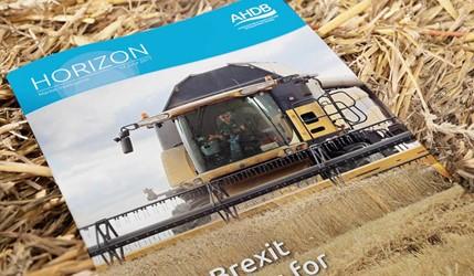 Horizon - Post-Brexit prospects for UK grains - 14 June 2017