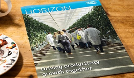 Horizon - Driving productivity growth together - 2 January 2018