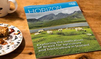 Exploring the implications of Brexit for agriculture and horticulture in Scotland