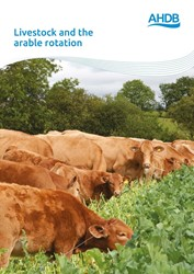 Livestock and the arable rotation