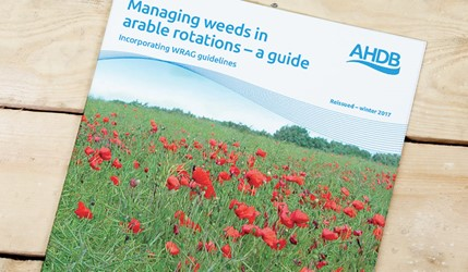 Managing weeds in arable rotations – a guide