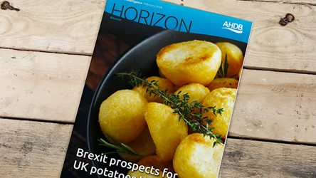 Brexit prospects for UK potatoes trade