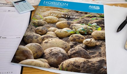 What might Brexit mean for UK trade in potato products?