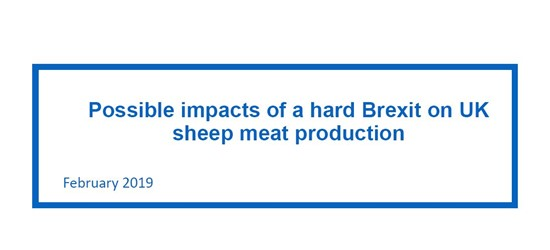 Possible impacts of a hard Brexit on UK sheep meat production