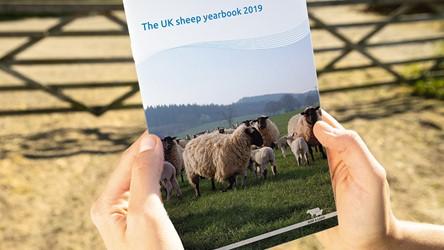 The UK Sheep Yearbook 2019