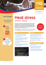 Heat stress - indoor herds