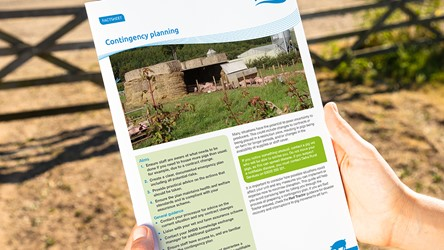 Contingency planning for pig keepers