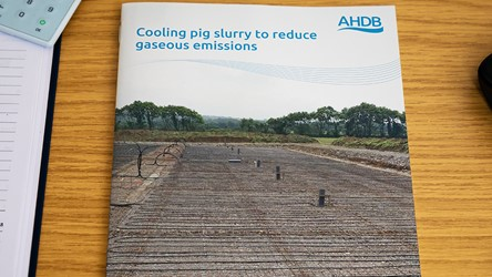 Cooling pig slurry to reduce gaseous emissions