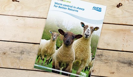 Worm control in sheep for Better Returns