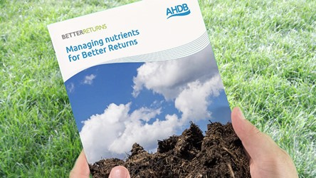 Managing Nutrients for Better Returns