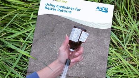 Using medicines for Better Returns
