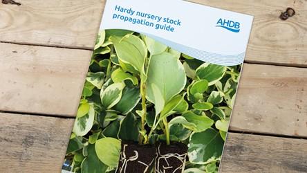 Hardy Nursery Stock propagation guide