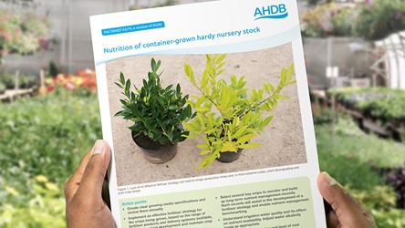 Nutrition of container-grown hardy nursery stock