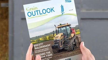 Grain Outlook spring 2019