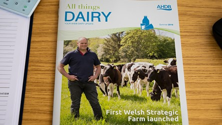All Things Dairy - Summer 2019