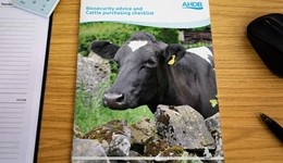 Biosecurity advice and cattle purchasing checklist