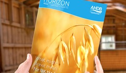 Horizon - What might Brexit mean for UK trade in Cereal and Oilseed products? - 17 January 2017