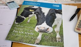 Horizon - What might Brexit mean for UK trade in dairy products? - 17 January 2017