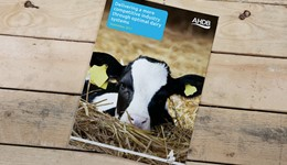 Delivering a more competitive industry through optimal dairy systems