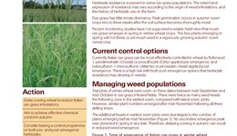 Effective, sustainable Italian rye-grass control in winter cereals
