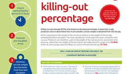 Factors affecting killing-out percentage